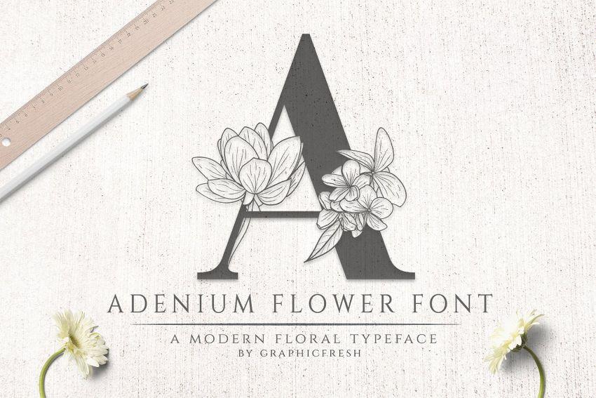 adenium font