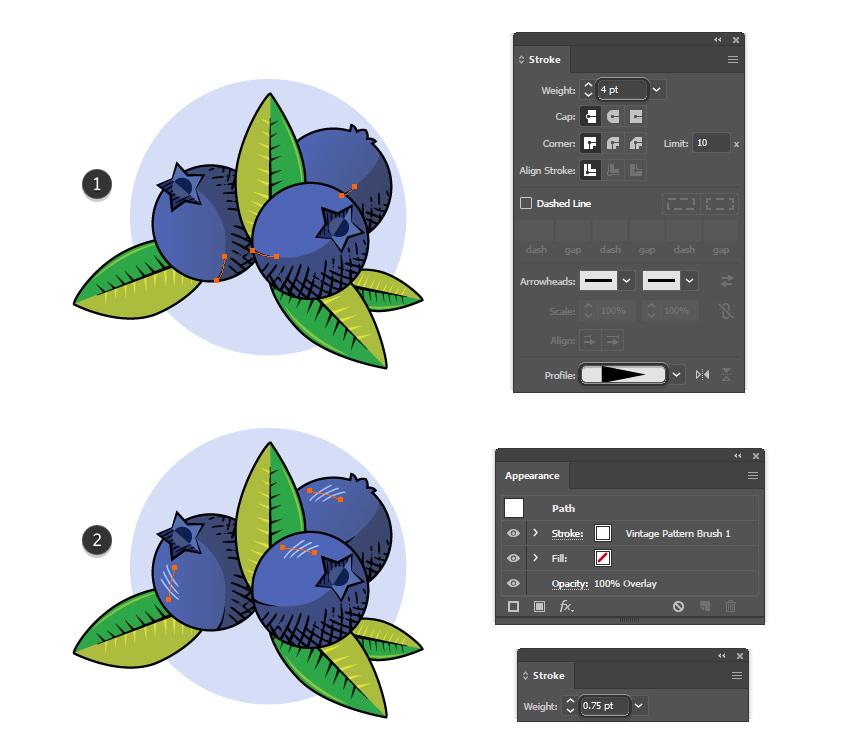 how to add details on vintage fruit badges in Illustrator