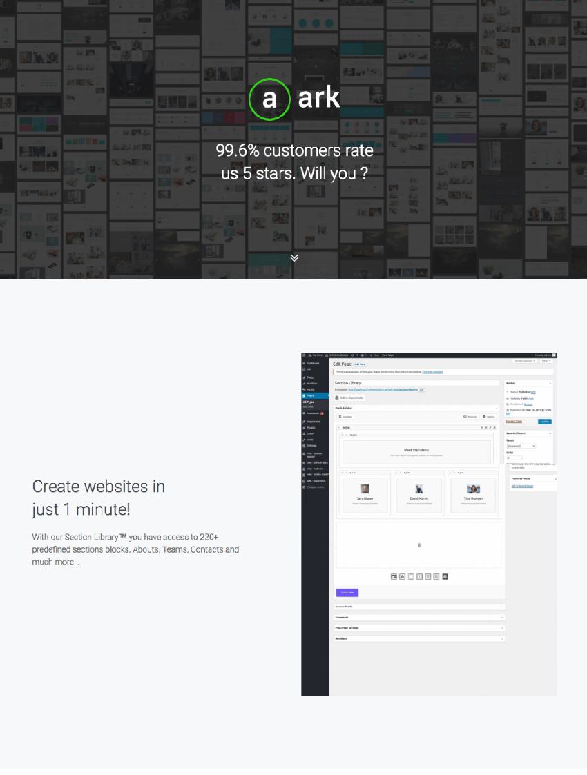 The Ark WordPress theme
