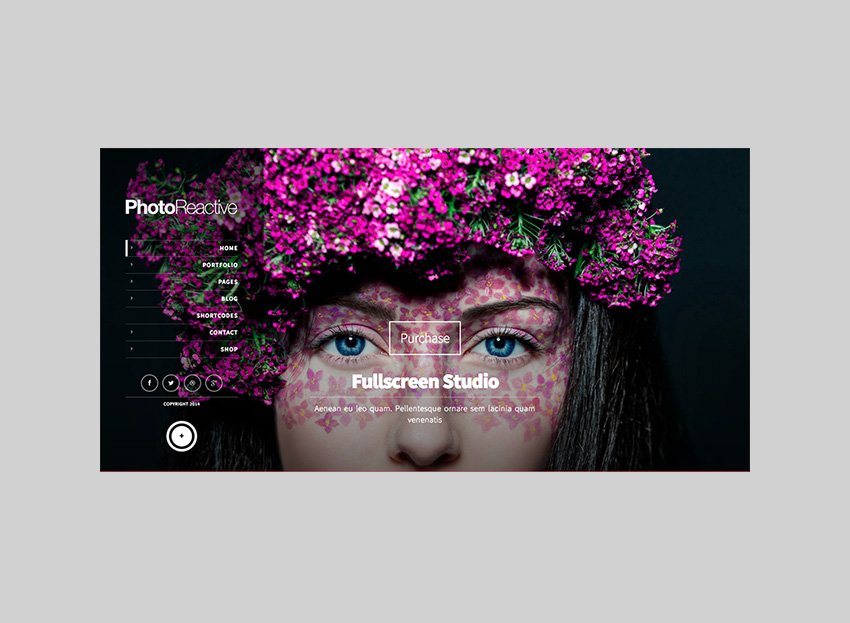 Photoreactive Full-Image WordPress theme