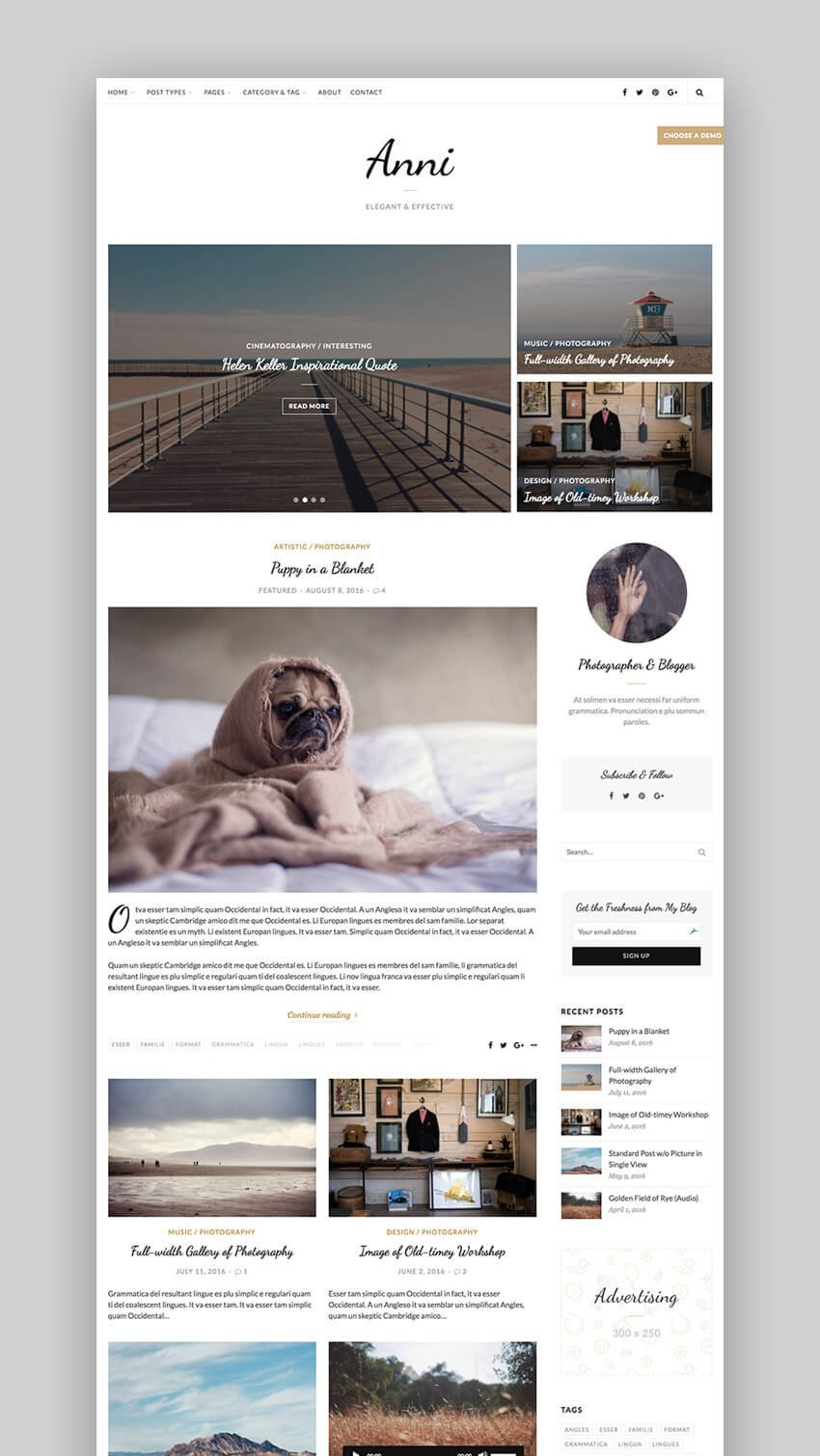 Anni video WordPress theme