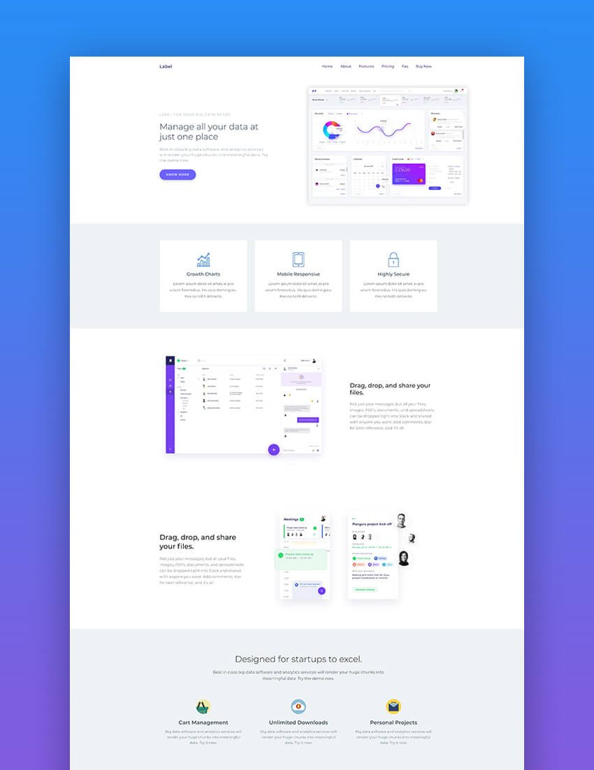 Label software and app landing page template