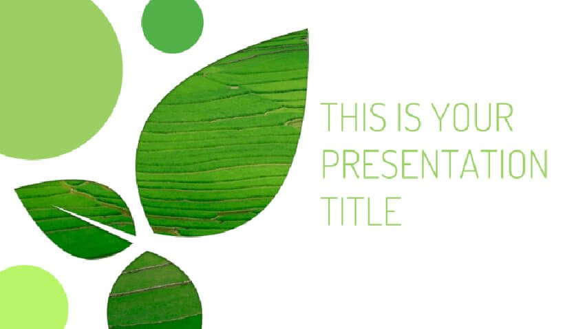 Eco-Friendly Minimalist PPT Template Free Download