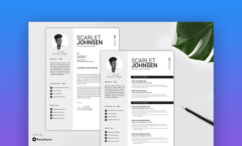 Clean Resume CV Vol 41 - Classic and Basic Resume Template