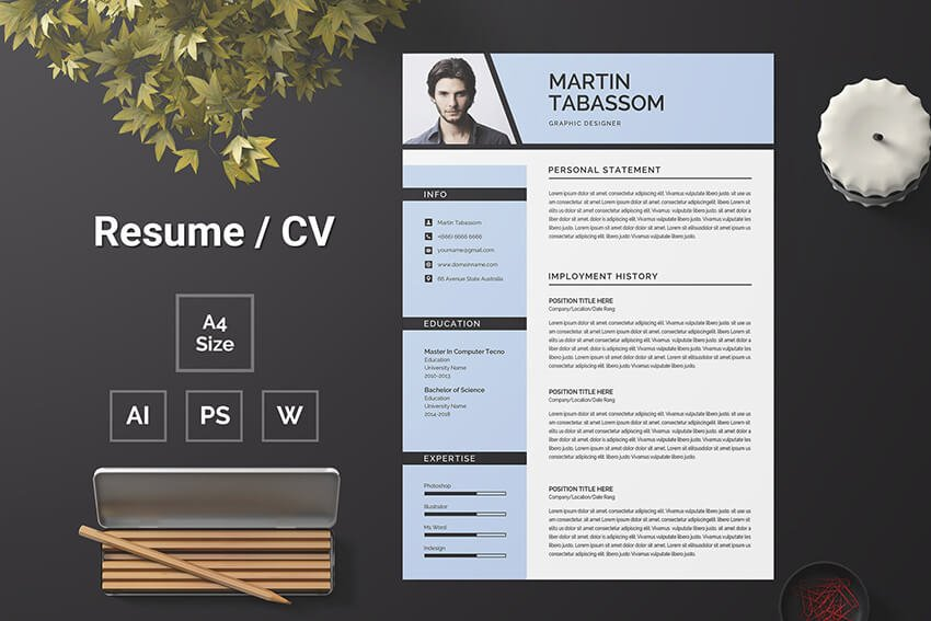 Premium Resume Template Example for Word