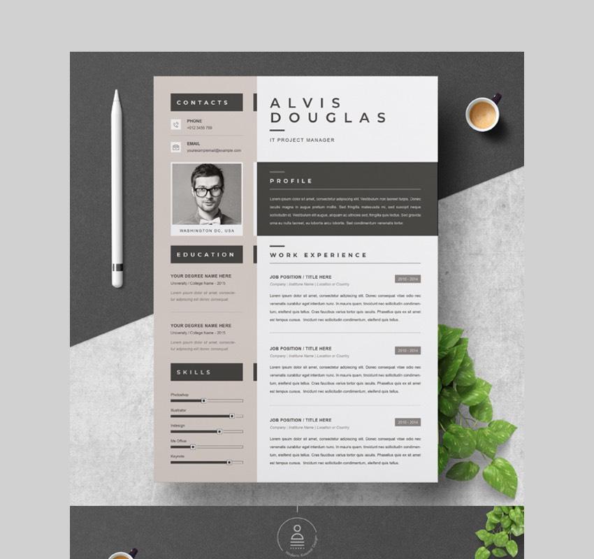 Elegant  Visual Resume Template