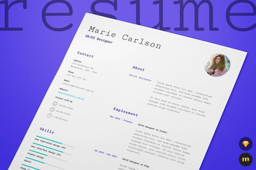 Single Page Resume CV