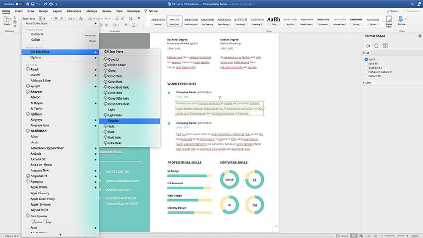 Changing fonts in the CV Resume template