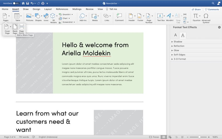 Adding more pages to the Newsletter template.