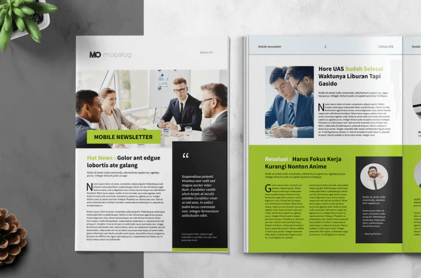 Newsletter template with color options