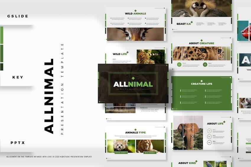 Animals presentation template