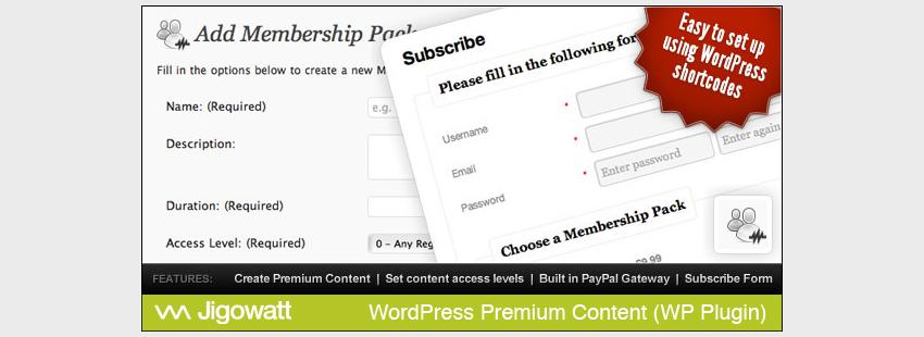 WordPress Premium Content