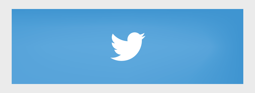 Build Your Own Twitter Widget