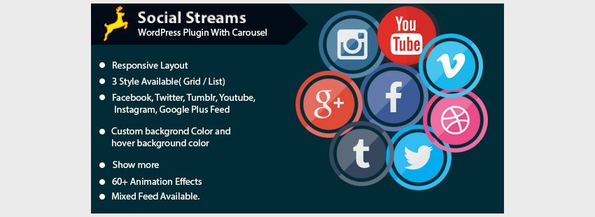 Social Stream for WordPress with Carousel