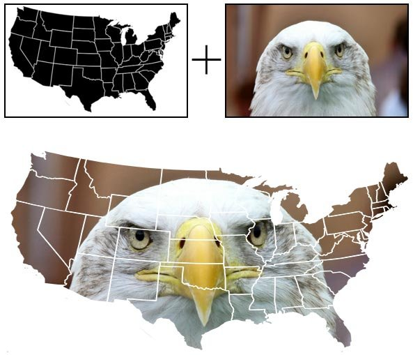 Combining US map with a bald eagle image