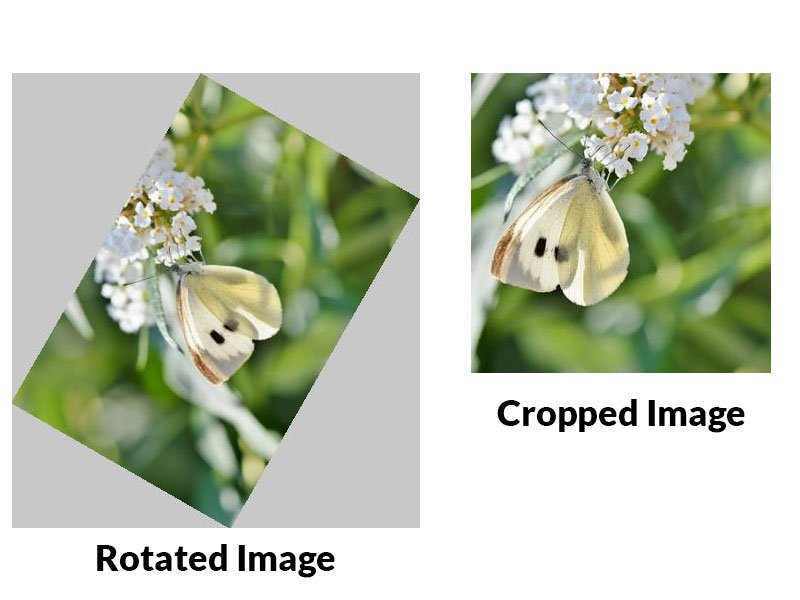 Crop and Rotate Images Using PHP