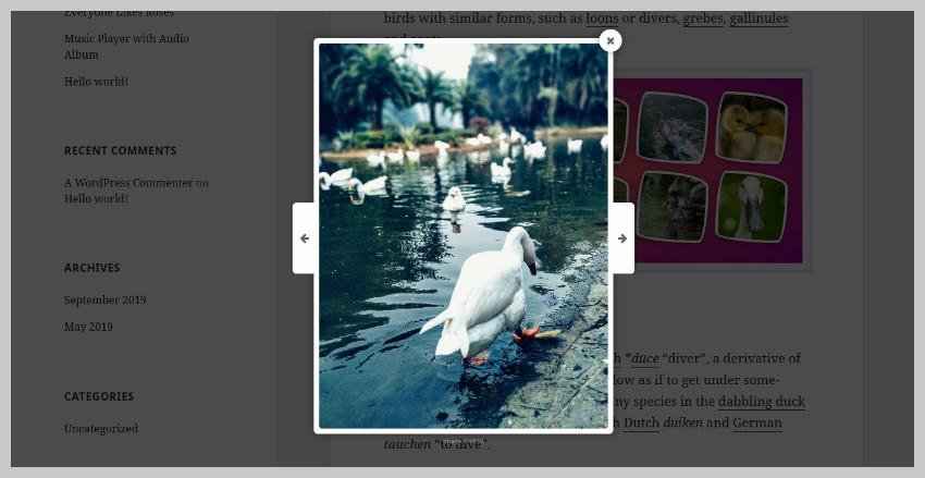 Image Gallery Lightbox