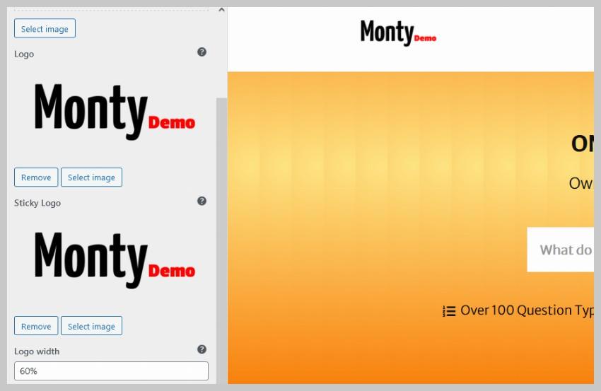 Eduma Theme Customizer Logo Options