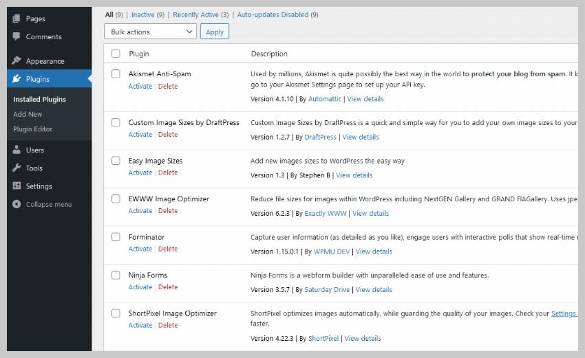 Deactivated WordPress Plugins