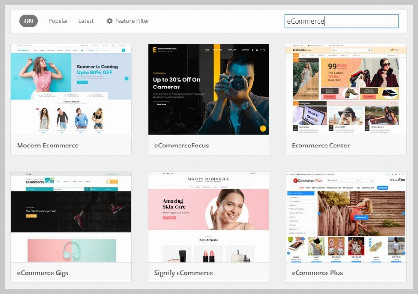 WordPress eCommerce Themes - WordPress vs Shopify: Which is Better?