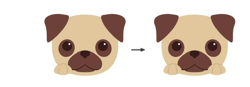 placing the paw and creating another one