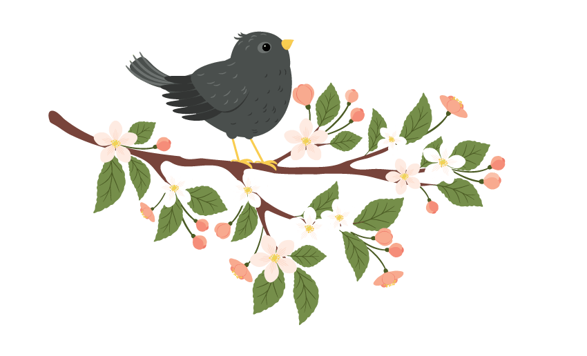 placing the starling on the branch