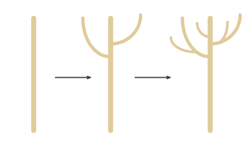 how to create the trunk and branches
