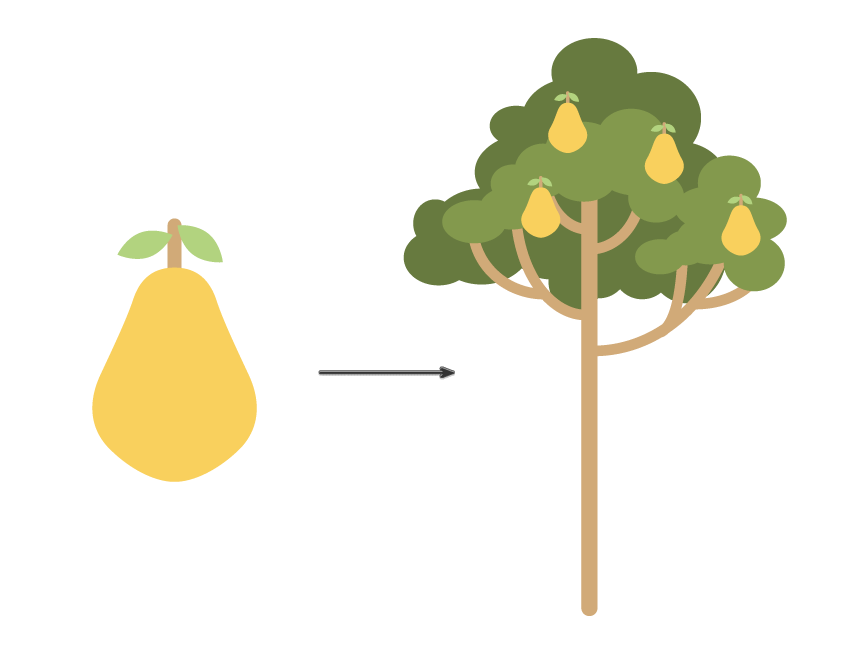 how to spread pears on the tree