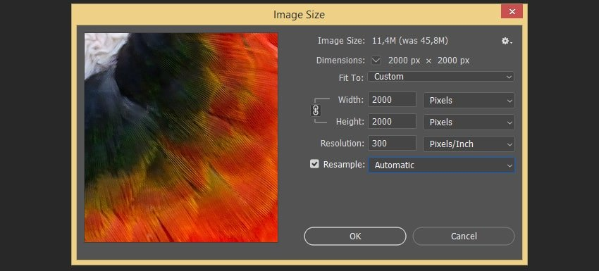 Changing the size of the image