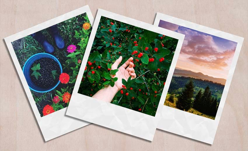 Rectangle Polaroid Layout Template Tutorial moving and transforming the templates