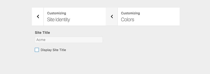 Site Title input field is disabled and two color pickers are hidden