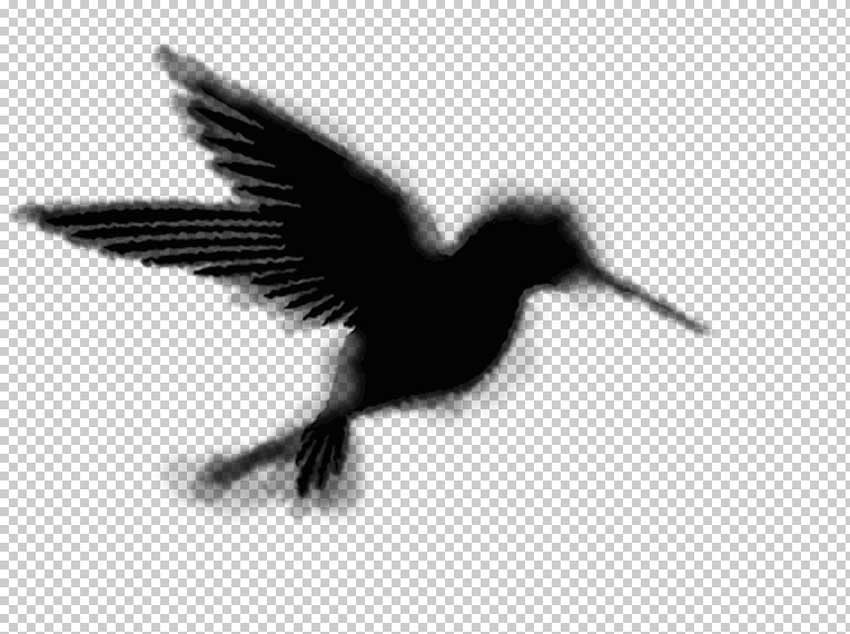 How to Make Clouds in Photoshop Tutorial Bird Shape