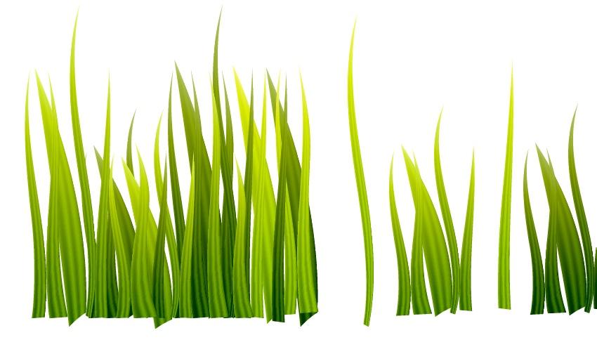 Arranging the grass
