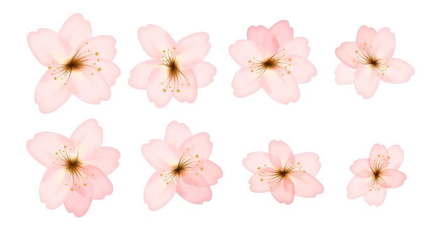example of different flowers you can create