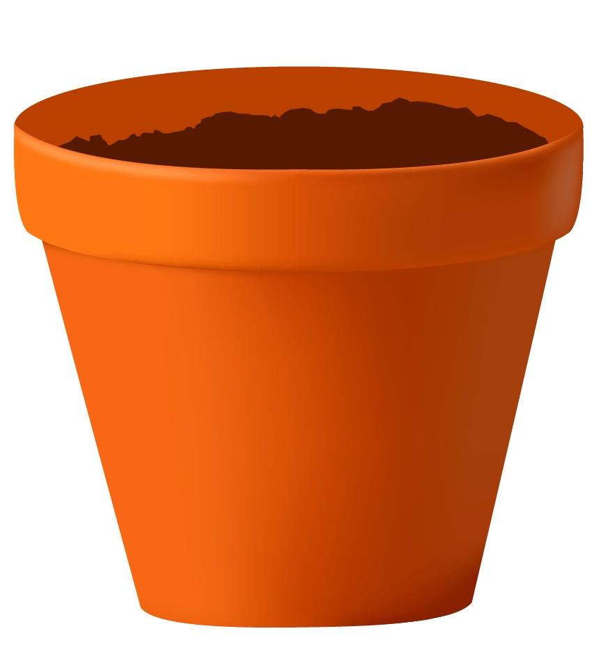 put soil into the pot