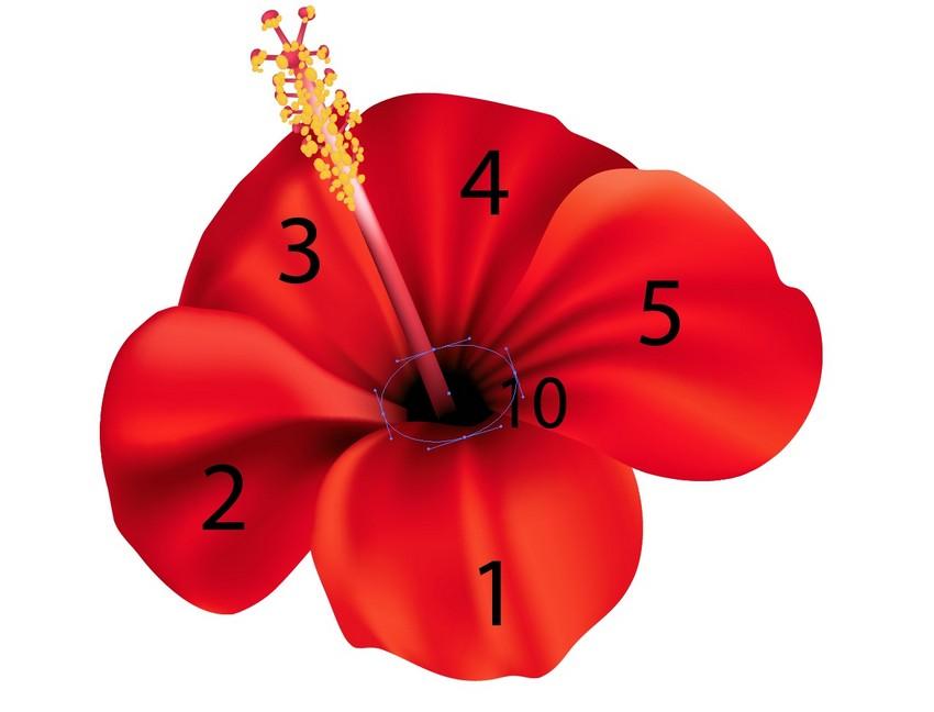 assemble flower