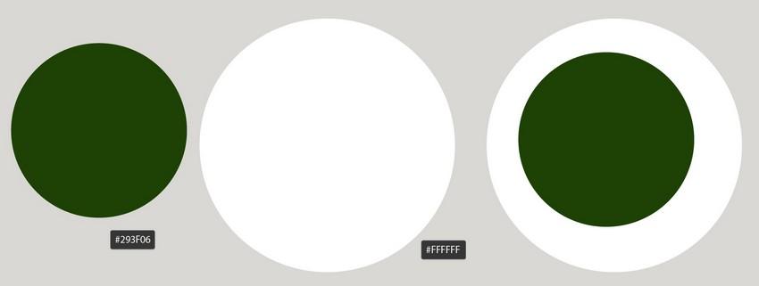 draw two circles