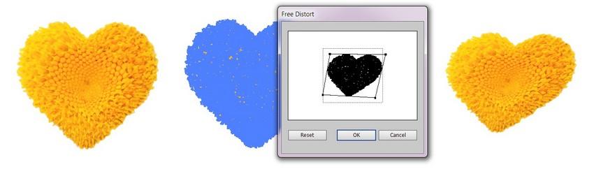 free distort