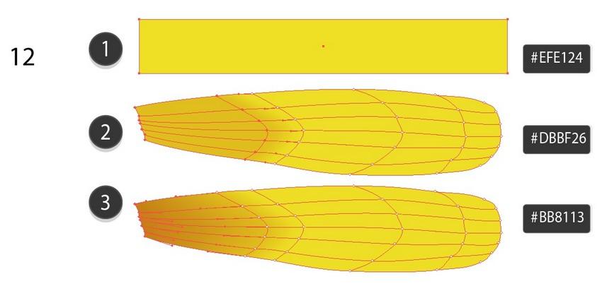 dandelion flower petal vector
