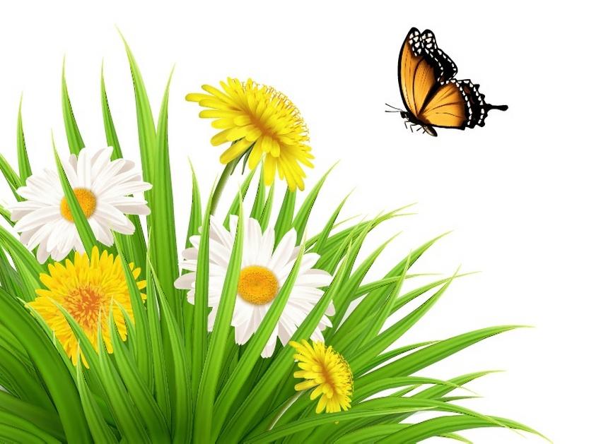 vector nature scene tutorial grass dandelion daisy butterfly mesh