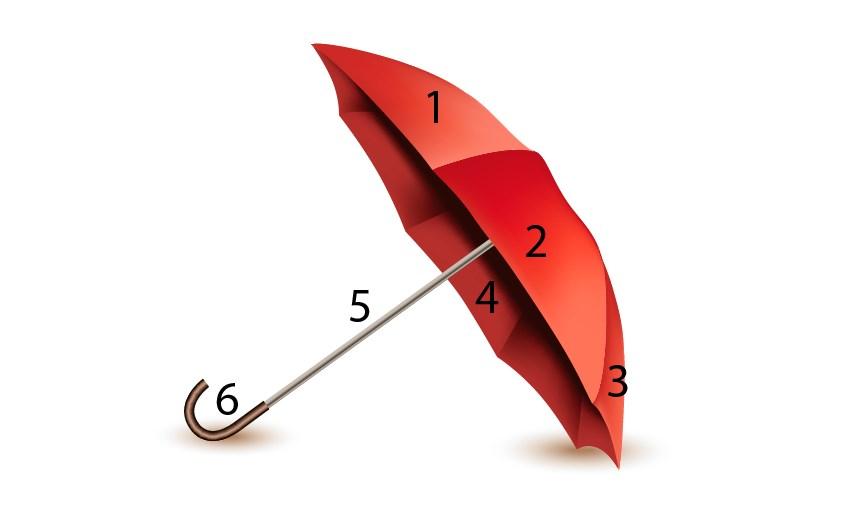 vector umbrella