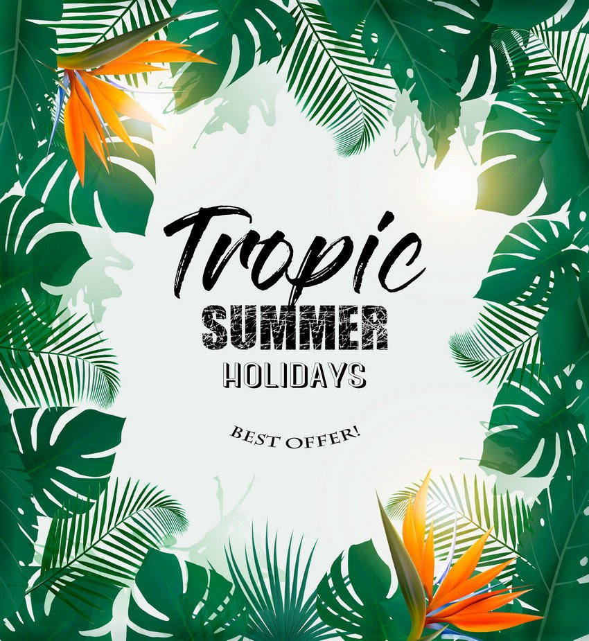 Summer Holiday Background With Tropical Plants