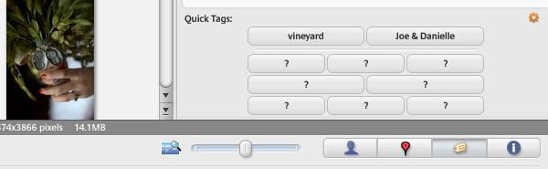 Quick Tagging Panel