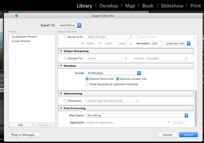 Screenshot of Export dialog box with Remove Location Info selected