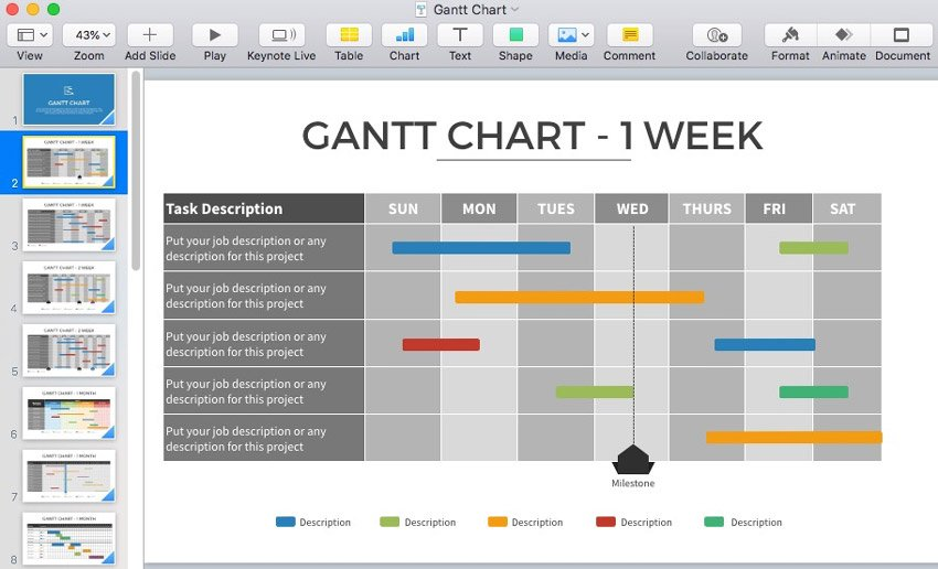 1 Week Gantt Chart