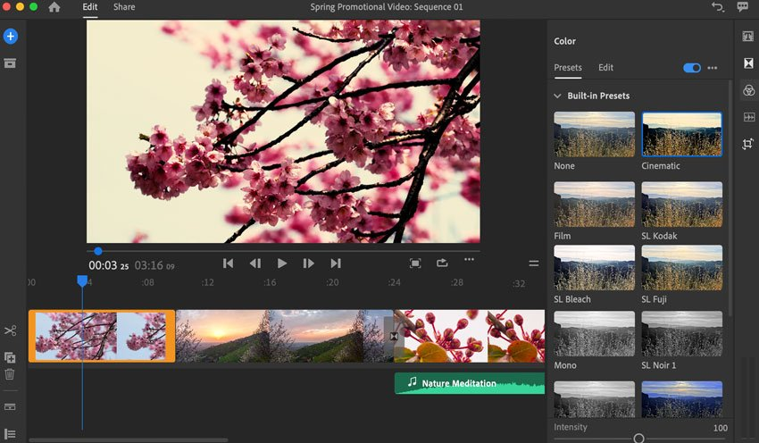 Adobe Rush clip preset