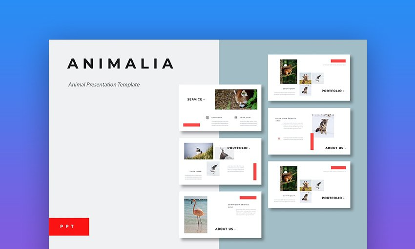Animal Google Slides theme