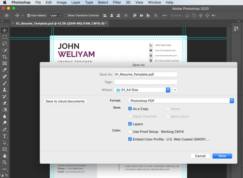 PDF modern CV template