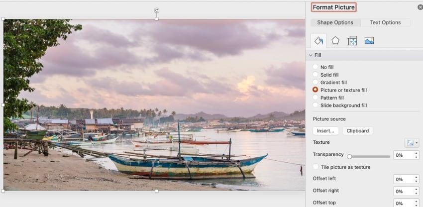 Background photos in PowerPoint