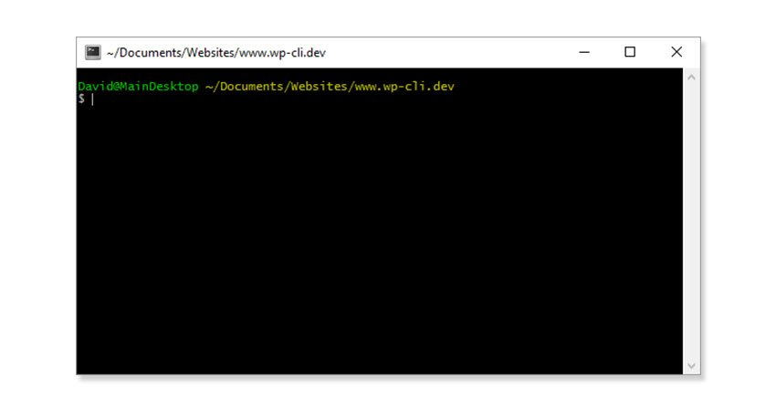 Preparing to use WP-CLI
